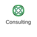 10 consulting services